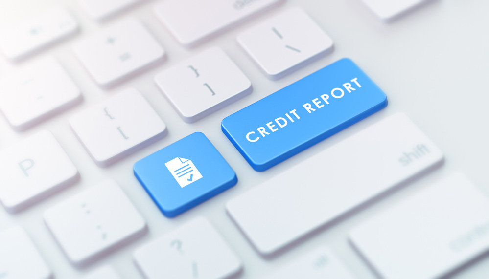 HOW TO CHALLENGE YOUR CREDIT REPORT 1